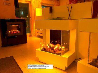 Concept 4 L50 Feuerinnenraum